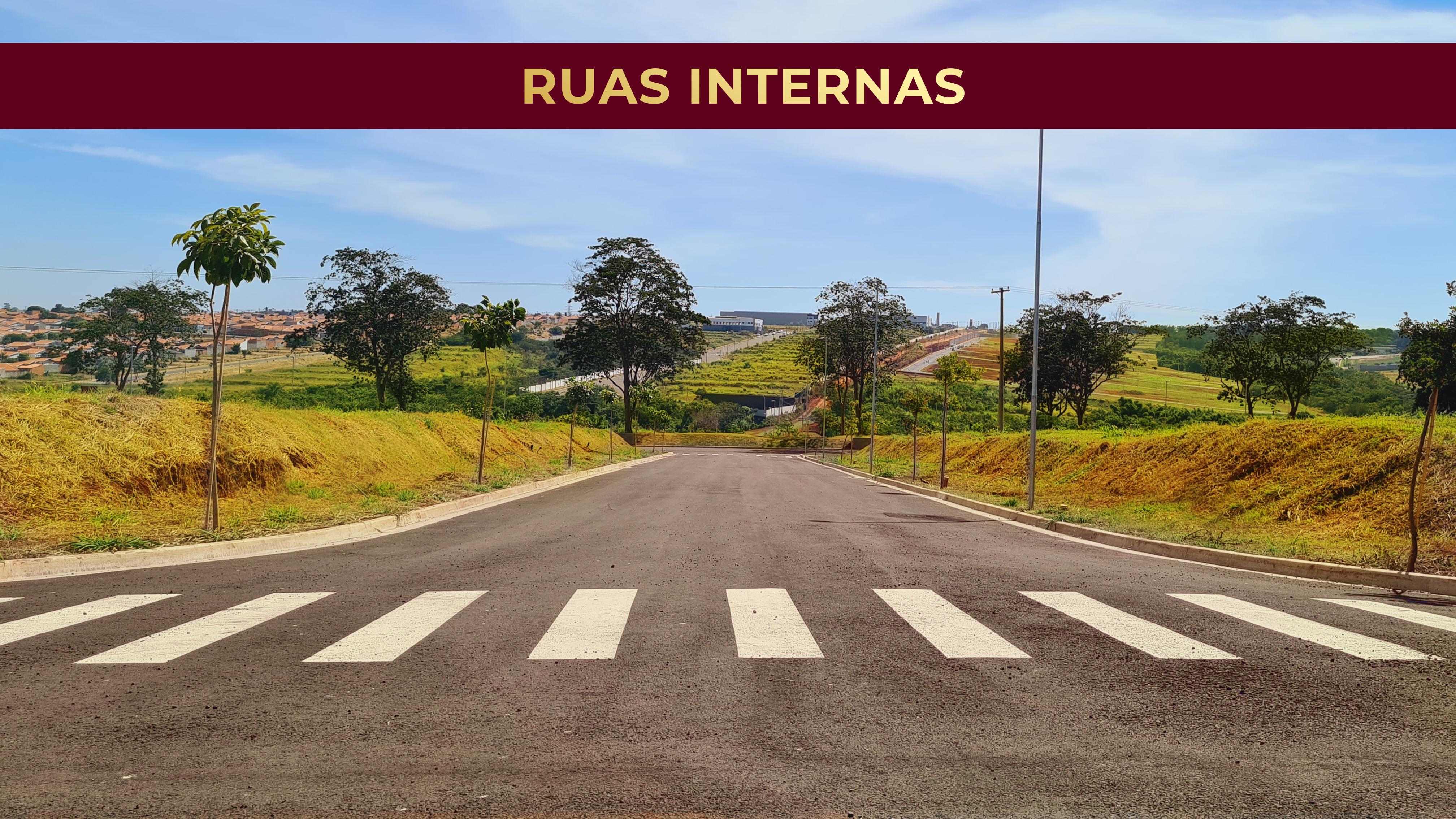 Ruas Internas